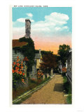Nantucket, Massachusetts - View of Ash Lane Posters by  Lantern Press