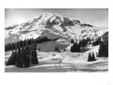 Rainier National Park - Early Spring in Paradise Valley Photograph Poster by  Lantern Press