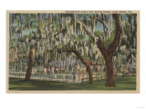 Lake Wales, FL - Outdoor View of Shuffleboard Court Poster by  Lantern Press