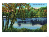New Haven, Connecticut - Edgewood Park View of the Duck Pond Print by  Lantern Press