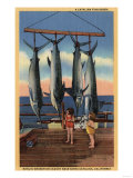 Santa Catalina, California - Little Girls Looking at Caught Swordfish Posters by  Lantern Press