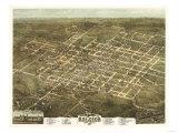 Raleigh, North Carolina - Panoramic Map Print