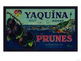 Portland, Oregon - Yaquina Prune Label Print