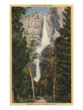 Yosemite National Park, CA - View of Yosemite Falls & Valley Posters by  Lantern Press