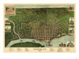 Paducah, Kentucky - Panoramic Map Print