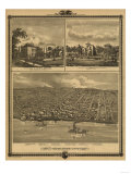 Muscatine, Iowa - Panoramic Map Print