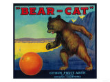 Bear Cat Orange Label - Ontario, CA Posters