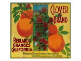 Clover Orange Label - Redlands, CA Poster by  Lantern Press