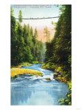 Lantern Press - Vancouver, Canada - View of Capilano Suspension Bridge No. 2 Umění