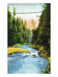 Vancouver, Canada - View of Capilano Suspension Bridge No. 2 Poster by  Lantern Press