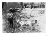 Black Children with Dog Drawn Cart Photograph - Tennessee Poster