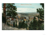 Spokane, Washington - View of City Through the Trees Posters