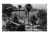Santa Catalina Island, CA - Aerial View of the Beach and Harbor Poster by  Lantern Press