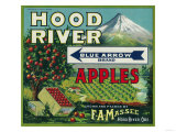 Blue Arrow Apple Crate Label - Hood River, OR Posters