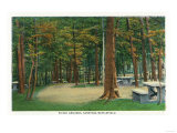 Schuylerville, New York - Picnic Grounds View of Saratoga Battlefield Posters
