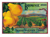Brownie Pear Crate Label - Cashmere, WA Posters by  Lantern Press