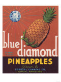 Blue Diamond Pineapple Label - Corozal, PR Posters