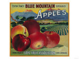 Blue Mountain Apple Crate Label - Cove, OR Posters by  Lantern Press