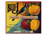 Blu-J Apple Crate Label - Watsonville, CA Poster
