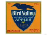 Bird Valley Apple Crate Label - Watsonville, CA Posters