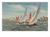 St. Petersburg, FL - View of Lightning Regatta Race Posters