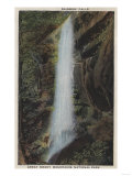 Great Smoky Mountains National Park, TN - Rainbow Falls View Posters