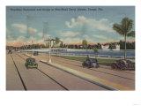 Tampa, FL - View of Bayshore Blvd, Bridge, Davis Is. Posters by  Lantern Press