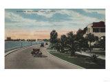 Tampa, Florida - View of Bayshore Blvd Poster by  Lantern Press