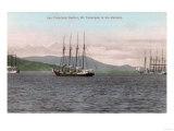 Harborview of Bay and Mt. Tamalpais - San Francisco, CA Prints by  Lantern Press