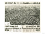 Westfield, New Jersey - Panoramic Map Print