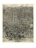 Tallahassee, Florida - Panoramic Map Posters