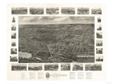 Wallingford, Connecticut - Panoramic Map Poster