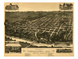 Tuscaloosa, Alabama - Panoramic Map Art by  Lantern Press