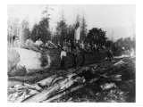 Group of Lumberjacks on Large Log Photograph - Cascades, WA Prints by  Lantern Press