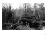 Lumberjacks and Logging Trucks in Cascades Photograph - Cascades, WA Prints