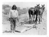 Indian with Mule Drawn Plow Photograph - Arizona Prints
