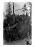 Lumberjacks standing around 7 ft. Fir Tree Photograph - Cascades, WA Art by  Lantern Press