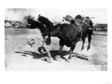 Cowboy being Bucked by Bull Rodeo Photograph - Miles City, MT Prints