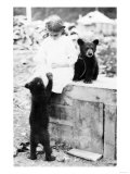 Girl Playing with Bear Cub in Seward, Alaska Photograph - Seward, AK Art