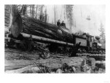 Logging Train carrying men and 12 foot diameter Fir Trees Photograph - Cascades, WA Prints by  Lantern Press