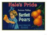 Hale's Pride Pear Crate Label - Suisun, CA Art