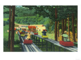 Cranmore Mountain Ski-Mobile in Summertime - North Conway, NH Prints