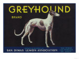 Greyhound Lemon Label - San Dimas, CA Premium Giclee Print by  Lantern Press