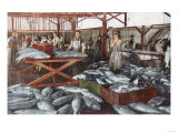 Interior View of a Salmon Cannery - Bellingham, WA Prints