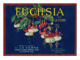 Fuchsia Lemon Label - La Verne, CA Prints by  Lantern Press