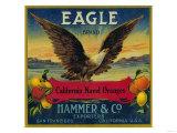Eagle Orange Label - San Francisco, CA Kunst von  Lantern Press