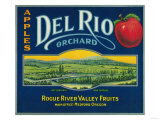 Del Rio Apple Crate Label - Medford, OR Art by  Lantern Press