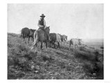 Cowboy on Horseback with Herd of Horses Photograph - Texas Art by  Lantern Press