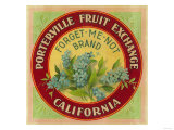 Forget Me Not Orange Label - Porterville, CA Prints by  Lantern Press