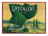 Greenleaf Lemon Label - Whittier, CA Prints by  Lantern Press